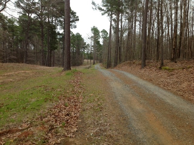Lake Erling Park 35 Tract Taylor Arkansas Land For Sale